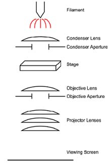 Simplified diagram of a TEM