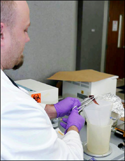 CMT member preparing a food sample for testing