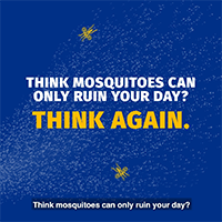 Texas, Declare WAR on Mosquitoes video thumbnail