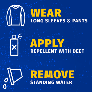 Wear long sleeves and pants. Apply repellent with DEET. Remove standing water