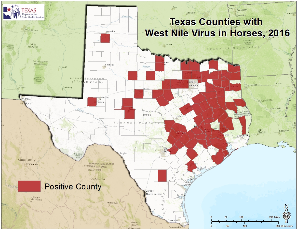 State and County Maps of Texas further Bailey County  Texas   Wikipedia also  as well Map of Texas Counties likewise TXGenWeb County Formation Maps moreover 2016 Texas West Nile Virus Maps furthermore The Autism Society of Texas – Autism Society of Texas in addition Texas State Map with counties outline and location of each county in likewise List of counties in Texas   Wikipedia as well 2015 Texas West Nile Virus Maps besides 1 Site Offers GIS Resources for Texas Counties furthermore Texas Rankings Data   County Health Rankings   Roadmaps in addition Amazon     Texas County Map  36  W x 32 61  H    Office Products further Printable Texas Maps   State Outline  County  Cities likewise Map of Texas Areas with their counties 1800   MAPS in 2018 further Texas by county map and travel information   Download free Texas by. on map of texas by counties