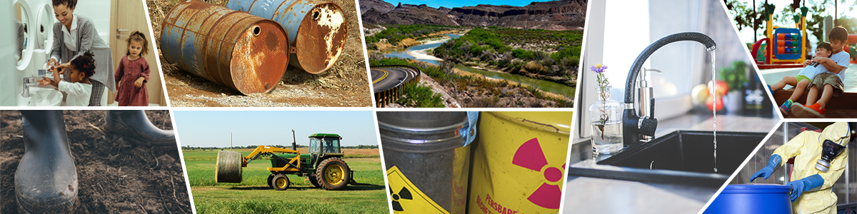 A collage of environmental and toxicology images.