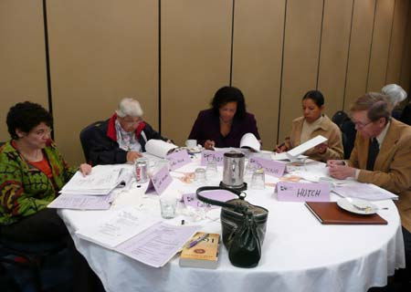 Photo of group discussion at TNSPMP meeting